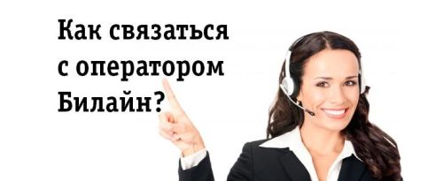 Как связаться с оператором Билайн
